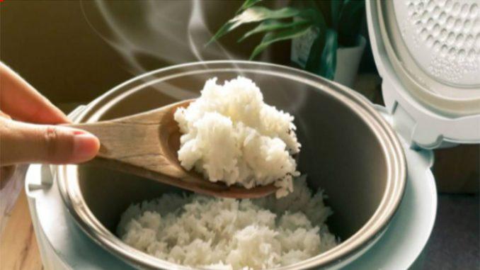 Permalink to Begini Cara Memasak Nasi yang Benar untuk Mencegah Badan Gemuk
